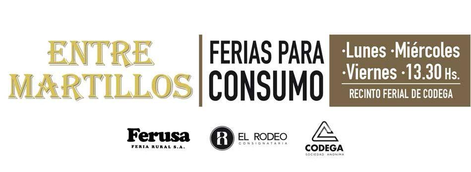 Consumo (1).jpg